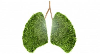 Kako dobro skrbite za zdravje svojih pljuč?