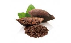 Kakav in izdelki iz kakava