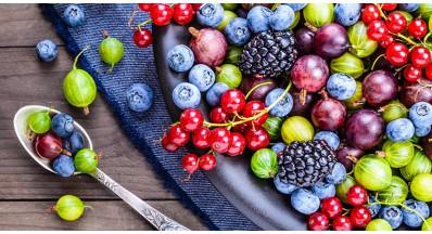 Kaj so antioksidanti in kje jih najdemo?