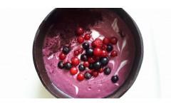 Ribezov sladoled iz kokosovega jogurta z antioksidanti