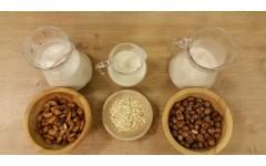 4 nasveti za življenje brez mleka