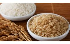 Rjavi riž