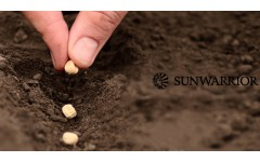 Poreklo Sunwarrior – od semena do beljakovin
