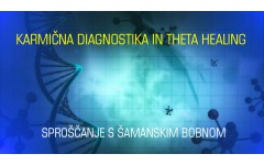 Svetovanje: Karmična diagnostika in Theta healing - 8. 9. 2015