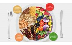 Kaj je uravnotežena prehrana? 1.del