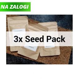 Mikrozelenje mali 3-seed pack
