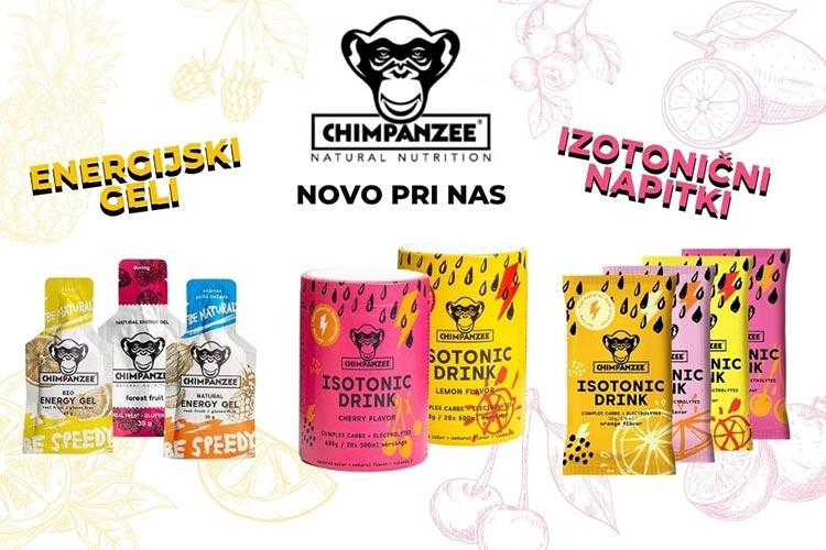 chimpanzee-novo