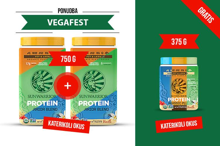vegafest-homepage-bnr